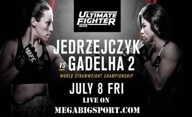 The Ultimate Fighter 23 Finale free live stream